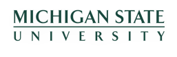 Michigan State University Wordmark for big screen