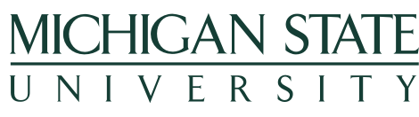 Michigan State University Wordmark for big screen